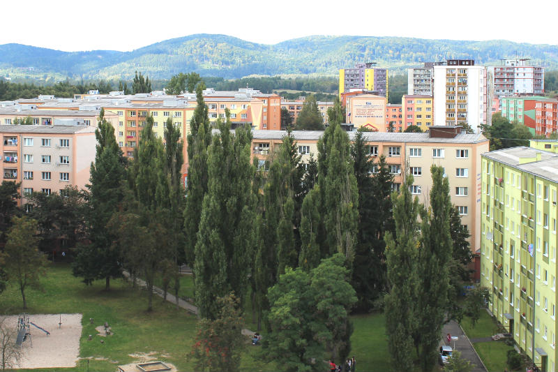 Pohled na starou alej topolů (srpen 2014). Foto: Martin Polák