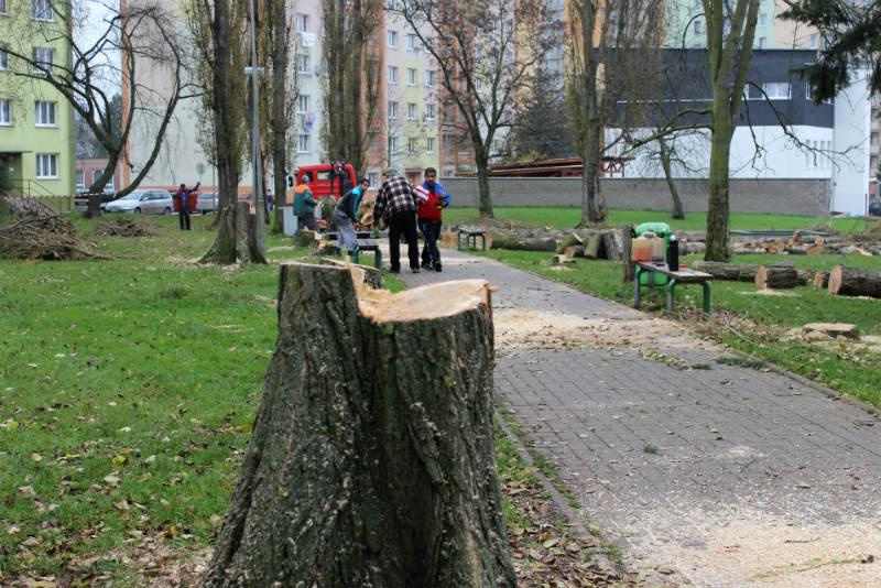 Revoluční ulice už je bez topolů. Foto: Martin Polák