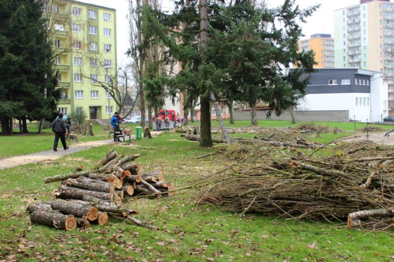 Po stromech zůstala jen halda špalků. Foto: Martin Polák