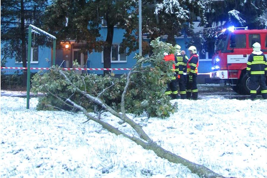 Chodovští hasiči odstraňují popadané větve. Foto: HZS KV