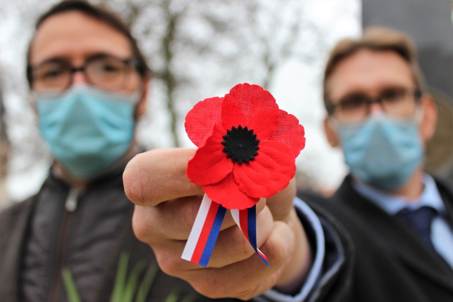 Květ vlčího máku – symbol dnešního Dne veteránů. Foto: Martin Polák