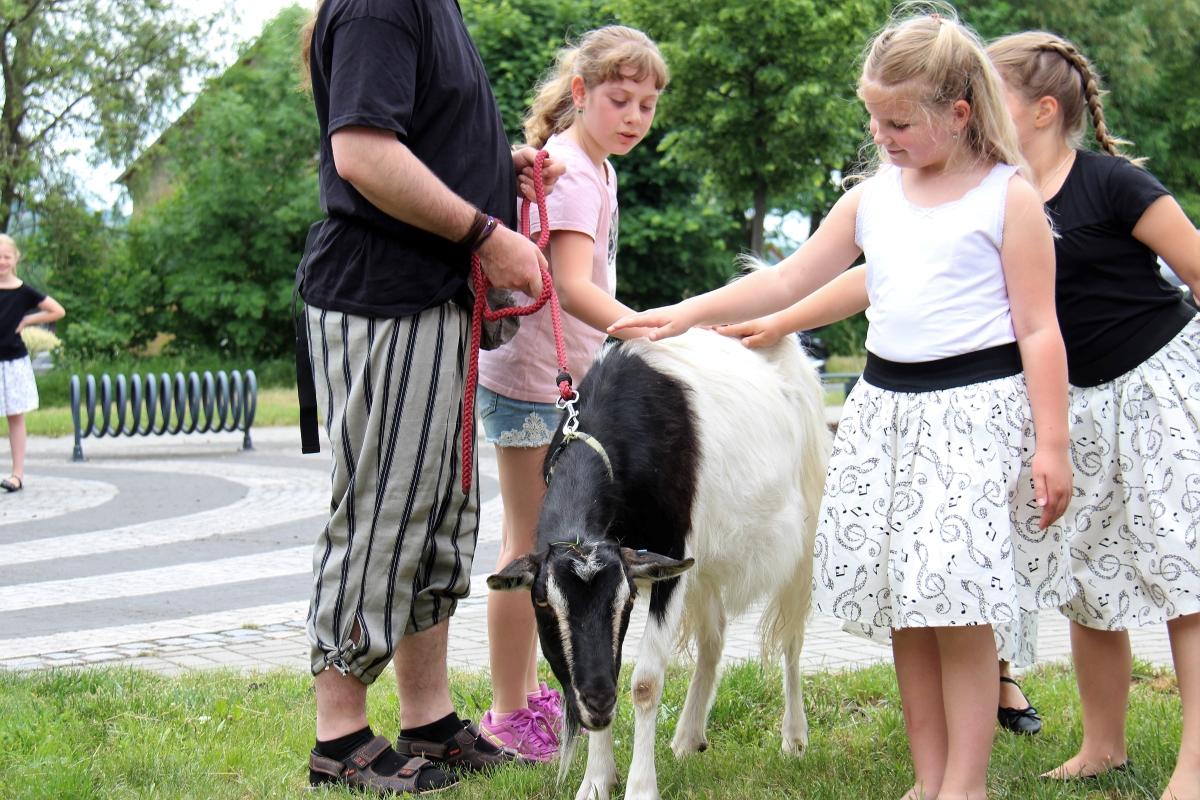 Kozel Smíšek, podle spolku jde o prapotomka kozy, kterou v Počernech vědec v dětském věku pásl :-).